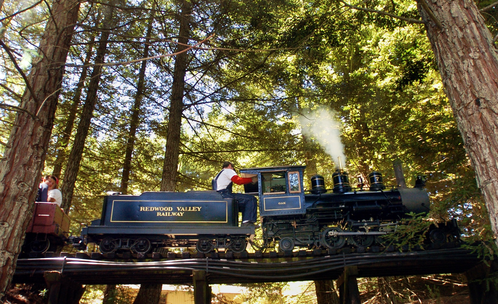 tilden trains
