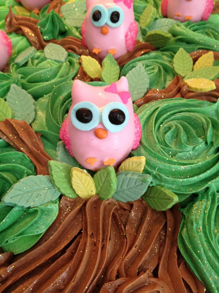 Owl Cupcakes Ideas Cupcake Cake With Owl