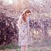 Anna Allen Clothing: Spring Summer 2012