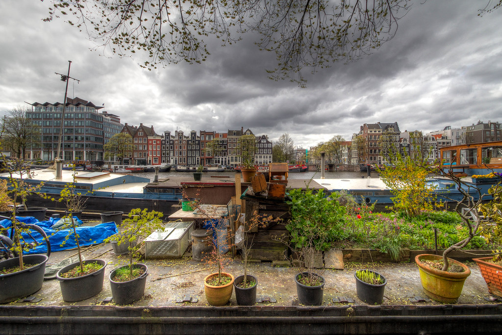 Floating garden typical scenery of amsterdam for B b amsterdam