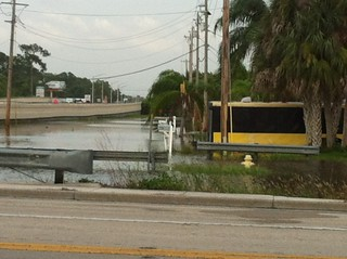 stormwater ditch adjacent to Pondella Rd | by Florida Sea Grant