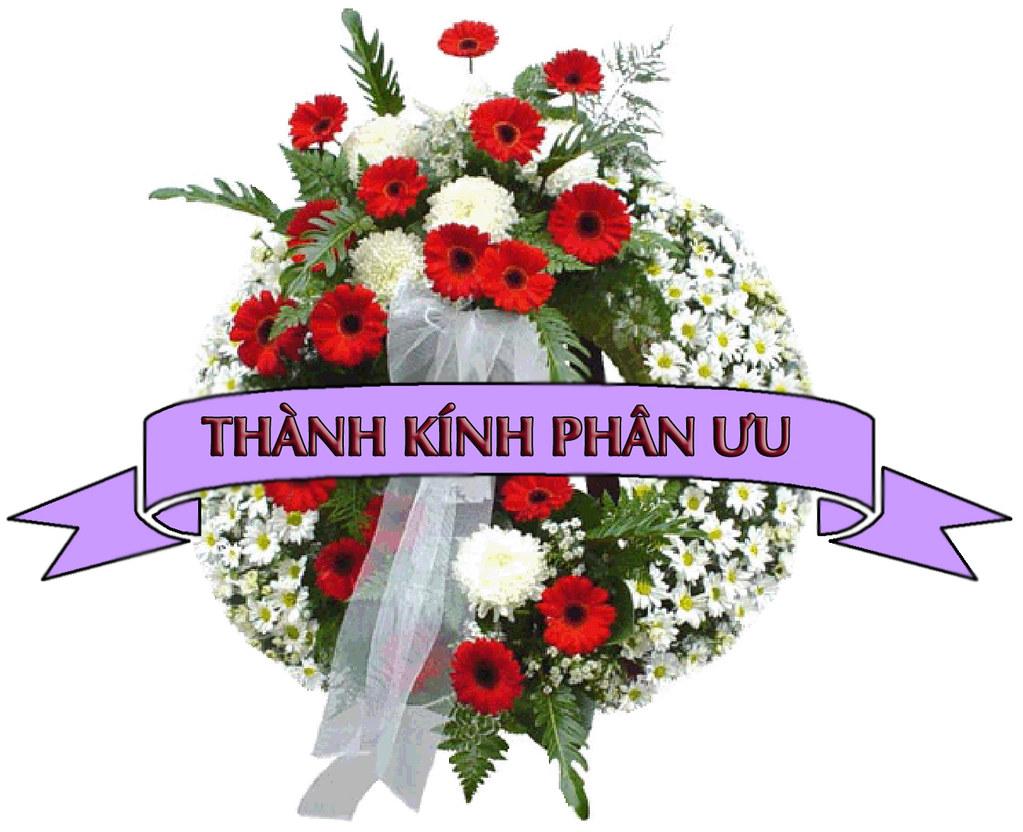 Image result for phan uu image