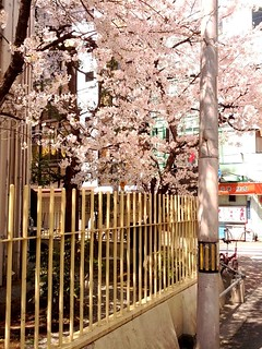Spring in Shinsaibashi | by JanneM