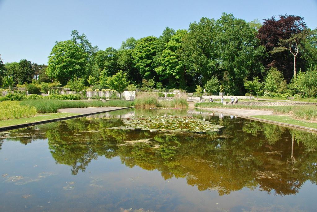La pi ce d 39 eau miroir the pond mirror florists park bru for Miroir 3 pans