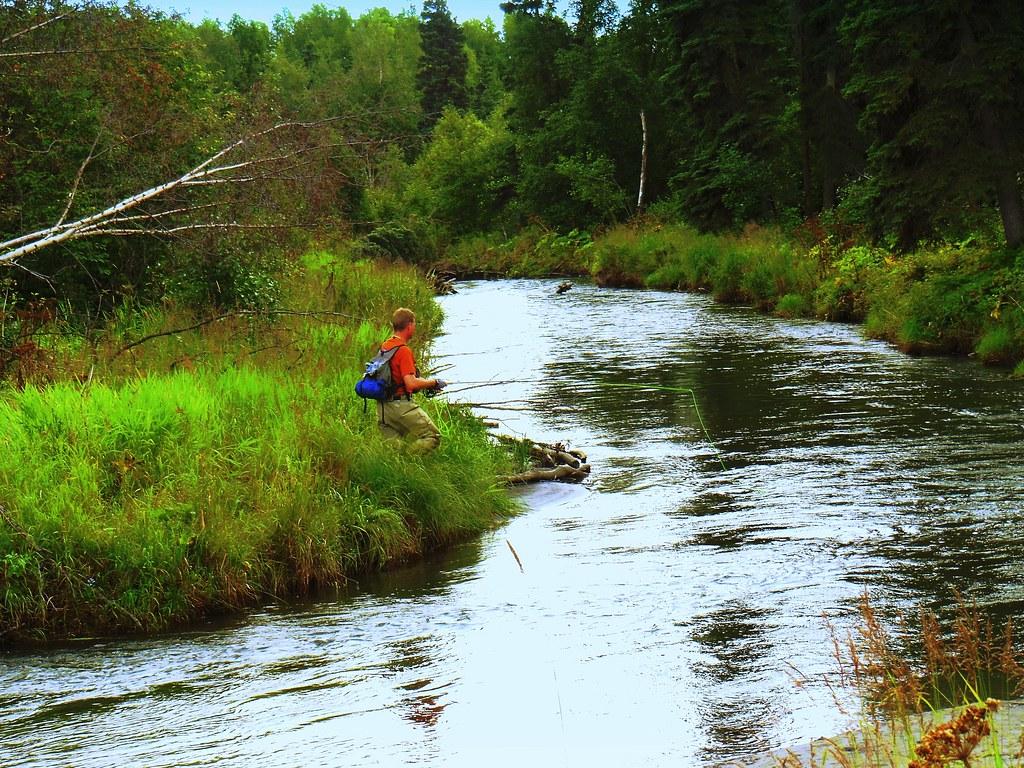 Alaska anchorage campbell creek fishing for Anchorage alaska fishing