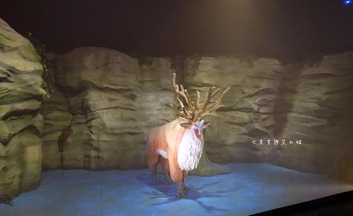 66 吉卜力的動畫世界特展
