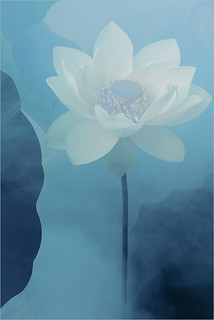 White Lotus Flower Surreal Series: DD0A7685-1-1000 | by Bahman Farzad