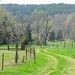 3-30-12 Friday Farm Fix 28 - FarmgirlFare.com