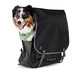 clifford canine carrier