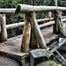 Van Trump Creek Bridge/Comet Falls Trail