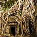 Doorway of Ta Prohm, Angkor Wat