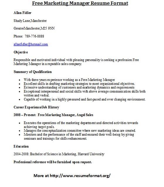 resume writing services bangalore kidsa web fc2