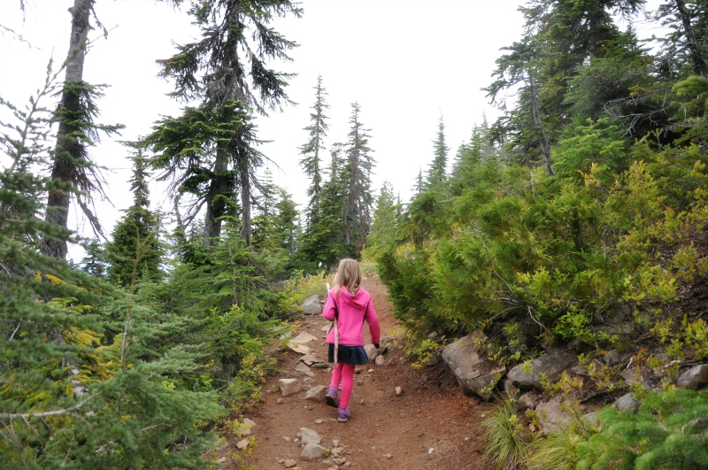 Triangulation Peak Hike 6 @ Mt. Hope Chronicles