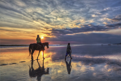 white horse beach single hispanic girls Find this pin and more on horse photos by stabledating amazing white horse bareback horse riding at the beach with girl flying her baby girl on white horse.