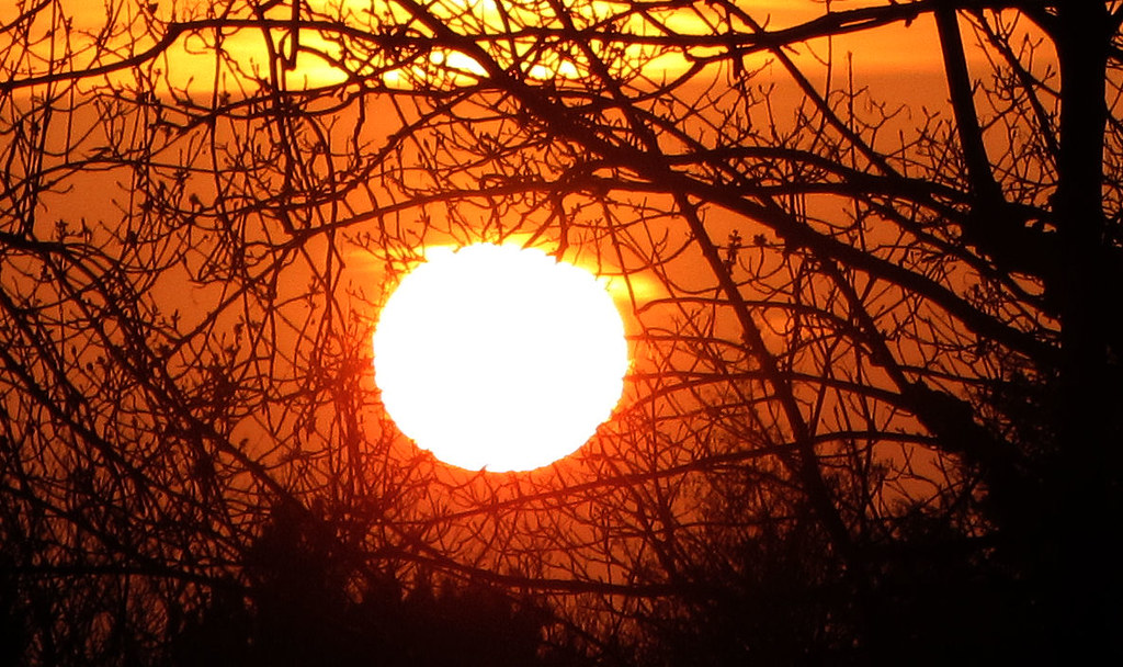 sun is burning The sun is burning in the sky strands of clouds go slowly drifting by in the park the lazy breeze are joining in the flowers, among the trees and the sun burns in the sky now the sun is in the west little kids go home to take their rest and the couples in the park.