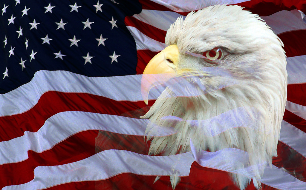 To acquire States United flag with eagle pictures trends