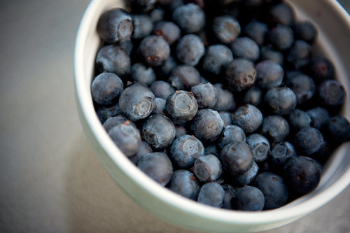 blueberries | by I Should Be Folding Laundry