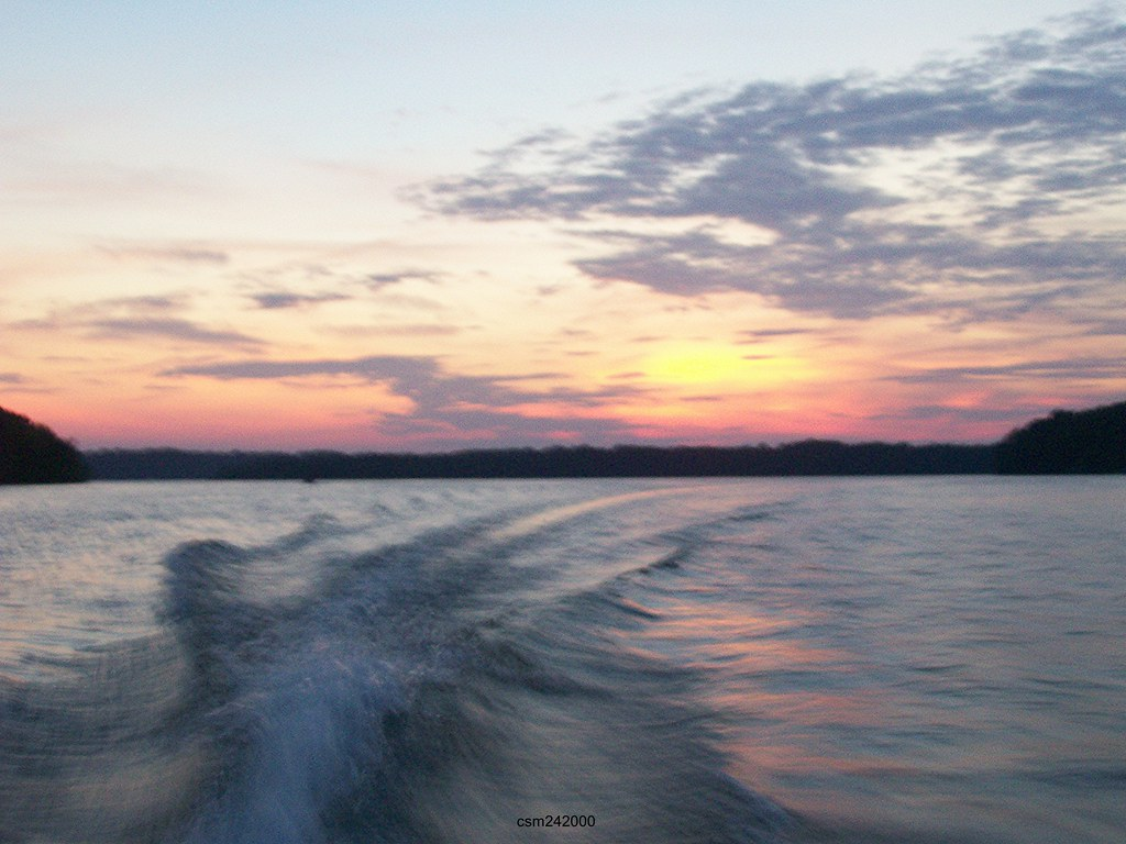 Making waves 50 mph a wake located on the tims ford for Tims ford lake fishing report