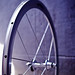 Campagnolo Shamal (untapped)