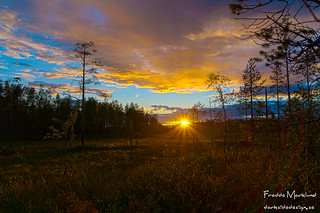 Sunset on marsh in the north of Sweden | by Darksidedesign