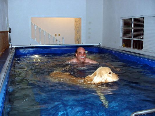 Canine Aquatic Therapy Www Endlesspools Com Endless