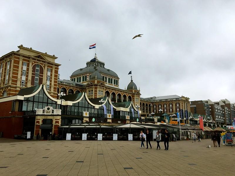 The Hague21