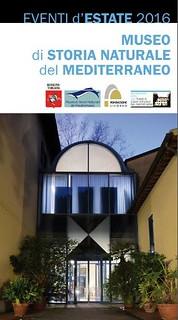 Museo del Mediterraneo Livorno