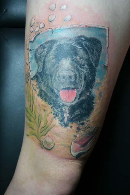 melbourne tattoo designs labrador big boys ink flickr. Black Bedroom Furniture Sets. Home Design Ideas
