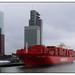 Santa Teresa @ Rotterdam Cruise Terminal