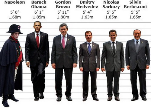 How to say average height in french