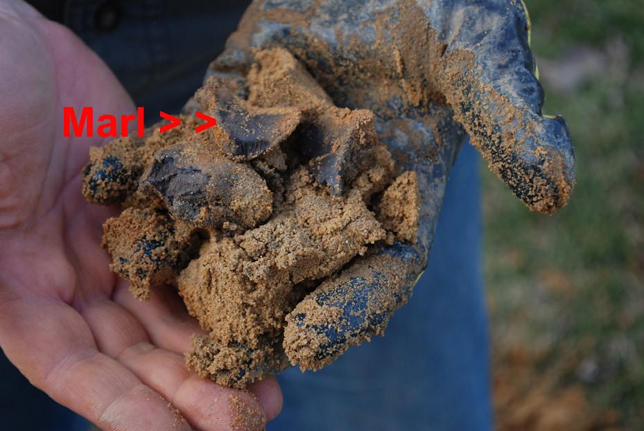Poor soil marl marl deposits are bad news for soil for Soil not draining