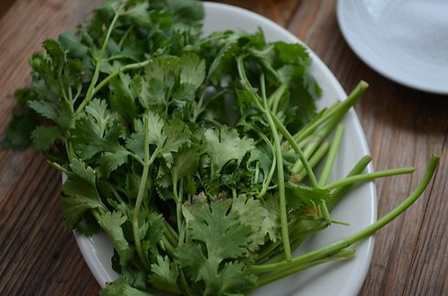 cilantro on plate | by myhalalkitchen2