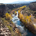 Verde River Tour with Jamie Mierau and Stacey Williams