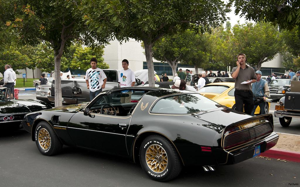 1979 Pontiac Firebird Trans Am Black With Chicken Decal