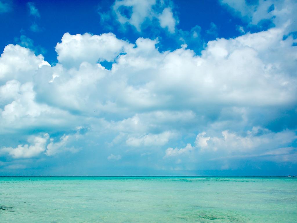 Caribbean colors | Ša...