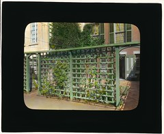 [Unidentified townhouse garden, probably in New York, New York. (LOC)