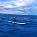 Talia Gangini makes her way across thew Molokai channel