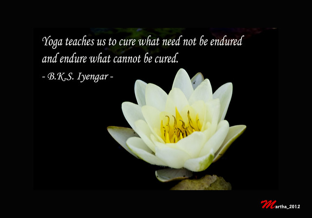 one of my favorite quote by b k s iyengar a famous yoga