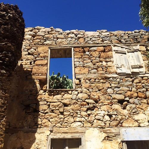 Crete cactus window