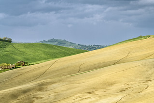 Colline Marchigiane | by Kid A Photography 