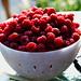 Bowl of Raspberries 201207IMG_1075