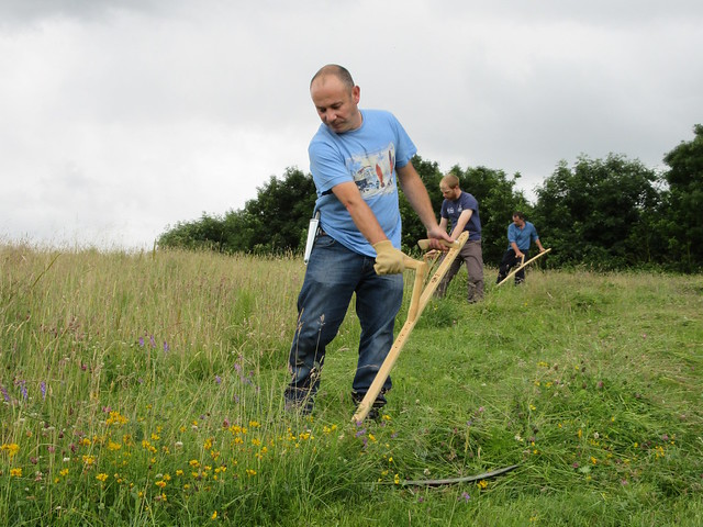 Learn scything in Cheshire