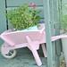 Flower filled kids pink wheelbarrow