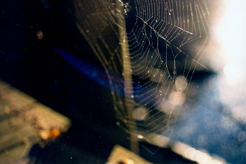 Web | by ananke stenai