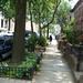 Greenest Block in Brooklyn 2012