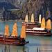 Junk boats in Halong Bay - Vietnam