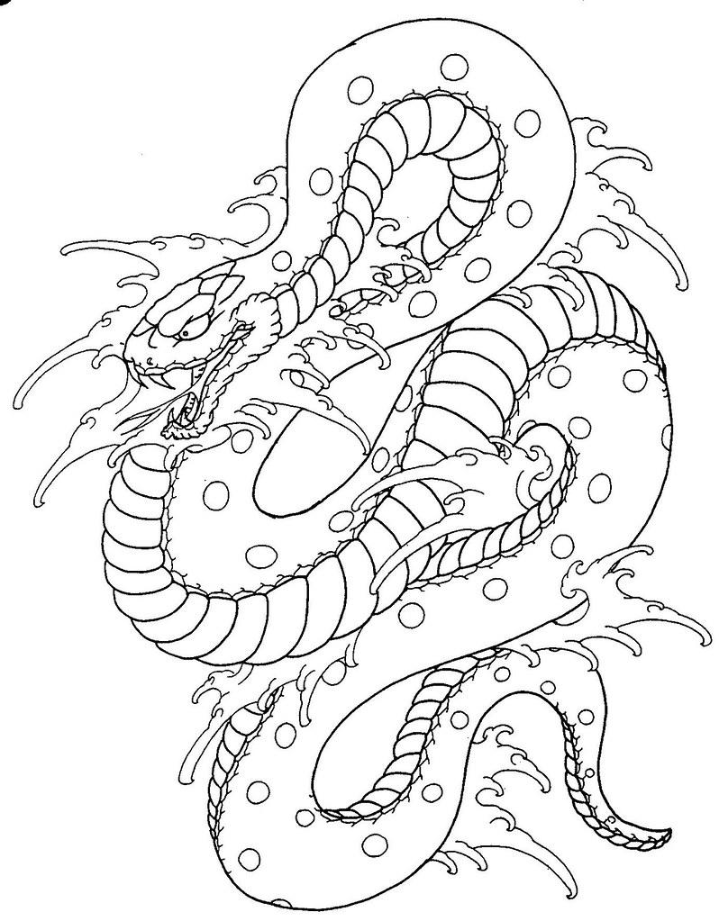 Snake Tattoo Line Drawing : Snake tattoo flash enjoy tattooedstranger flickr