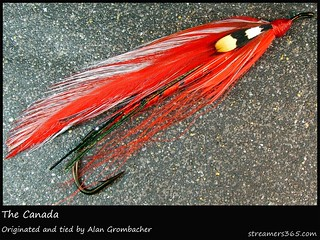 #183/365 Happy Canada Day! Here is Alan Grombacher's tribute to Canada, streamer-style. | by pacres