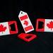 Canada Opener with predecessors 20120816-DSC_3452