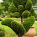 Children's Garden IMG_3595